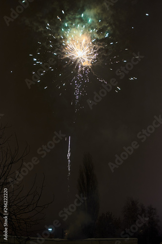 fireworks in the night sky - 246222220