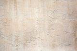Grunge cracked concrete wall - 246300230