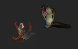 3d Illustration King Cobra Snake hunting and Squirrel Escape with Clipping Path.