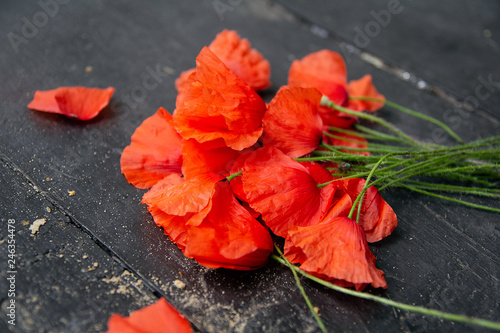 red poppies on a dark wooden table - 246354478