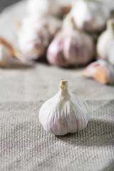 Garlic on fabric. Rustic style