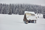 Barn in the winter - 246370464
