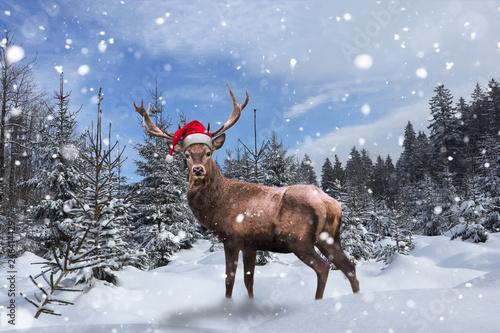 Leinwanddruck Bild Stolzes Rentier steht mit Nikolausmütze im Schnee