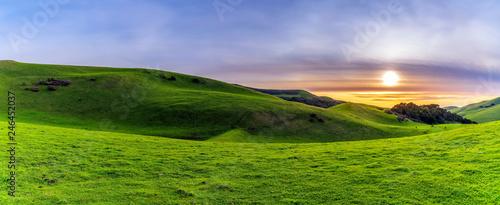 Panorama of Hills of Pasture Land at Sunset  - 246452037
