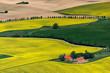 Leinwanddruck Bild - Insel Ruegen, Rapsfelder bei Altkamp, Mecklenburg-Vorpommern, Deutschland, Luftaufnahme