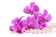 Orchid. A branch of pink orchids and pearls. Greeting card. Beautiful composition. Isolate on white background