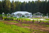 Fototapeta Las - Photo of the beautiful white wedding pavilion among forest © Chris Tefme