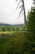 Beautiful British Columbia Canadian Lake in Summer