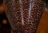 Coffee beans in a hopper - 246555823