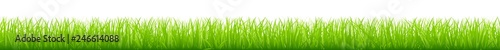Straight Meadow Banner Green - 246614088