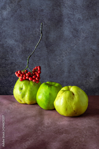 three fruit Quince at doschatom table in red Rowan bunch beam on a blue background 3 © kirillk