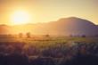 Quadro Sunset at the Farm
