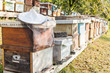 Leinwandbild Motiv Beekeeping hat on hive in apiary