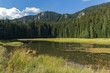 Summer landscape of  The Grassy (Trevistoto) Smolyan lake at Rhodope Mountains, Smolyan Region, Bulgaria