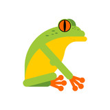 Tree frog isolated. Tropical amphibian vector illustration