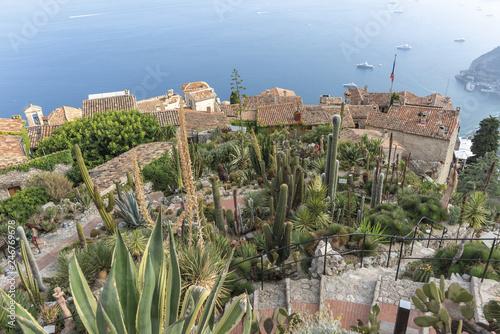 Francia Nizza Eze Città medievale giardino botanico succulente - 246769678