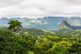 Cuba Viñales Pinar del rio