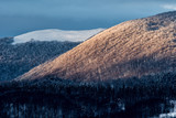 Snow-capped mountain peak in the rays of the setting sun. Winter evening in Bieszczady Mountains. Polonina Wetlinska. Poland
