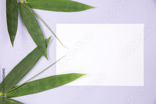 Bamboo Leaf with blank white card