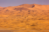 Desert Sahara with beautiful lines and colors at sunrise. Merzouga, Morocco - 246895451