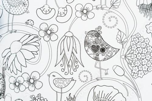 Arrière plan décoratif avec fleurs et oiseaux - 246897851