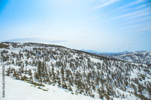 雪のアスピーテライン