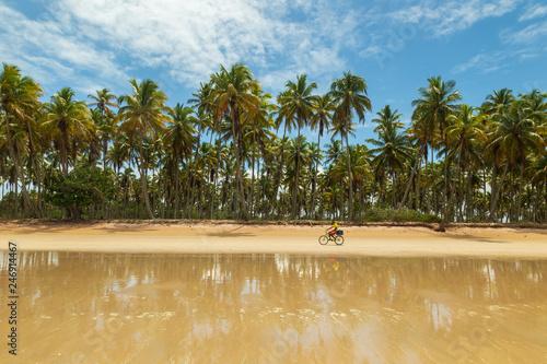 Ilha de Boipeba - Cairu Bahia - 246914467