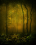 Fototapeta Las - Deep Woods Background © frozenstarro