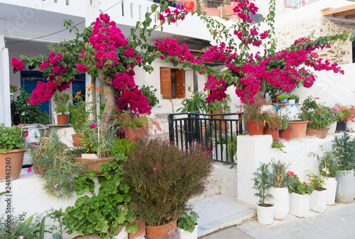 building on the Mediterranean decorated with flowers