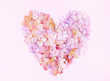 Flowers of a hydrangea in the form of a heart on the pink background - 247104256