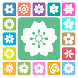 Set of Flower icons. - 247143027