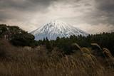Mount Fuji Rural Perspective