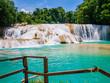 Leinwandbild Motiv Amazing view of Agua Azul waterfalls in the lush rainforest of Chiapas, Mexico