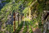 Sentiero del Tracciolino (Valchiavenna, Sondrio, Lombardia)