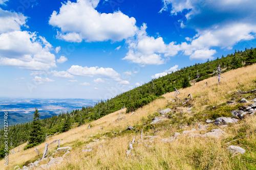 Scenic summer landscape of Giant Mountains -Karkonosze Mounatains in Poland