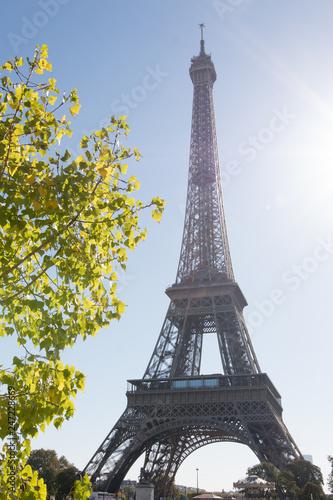 La tour eiffel - 247228669