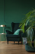 Leinwandbild Motiv Copy space on empty dark green wall of stylish living room with comfortable armchair and coffee table