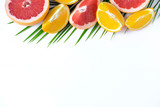 The basis for the banner with palm leaf and fruit. Grepfruit, orange, palm leaf with space for copispeysa. Frame for text with leaf of palm tree and fruit on a wooden background
