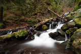 Starvation Creek Falls at Columbia River Gorge in Oregon