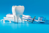 Tooth, health, dentistry concept. - 247320691