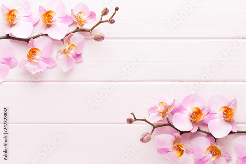 Foto Murales Orchid flower on the wooden pastel background. Spa and wellness scene.