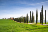 Fototapeta Natura - A Farmhouse near San Quirico d'Orcia with green hills and cypresses. © stefanotermanini