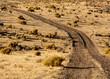 Dirt road in hIgh desert in Nevada