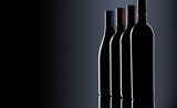 various wine bottles isolated