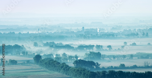 Landscape fields and trees among covered with fog - 247395012