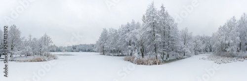 Panoramic aerial view of winter beautiful landscape with trees covered with hoarfrost and snow. Winter scenery from above. Landscape photo captured with drone. - 247413092