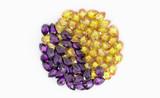 Colorful Ruby on background - luxury gemstone