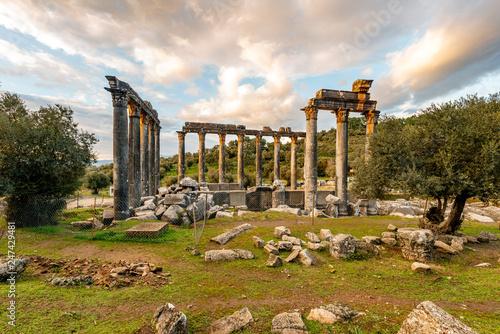 Soke, Milas - Turkey. January 13, 2019. Zeus Lepsynos Temple in Euromos.