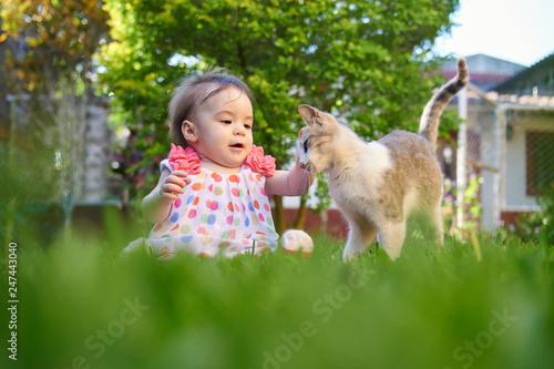 8816396 Baby girl touching cat