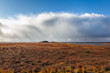 Tundra scene from Canadian Arctic in the fall